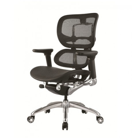 Ergo Mesh chair Lumbar Support